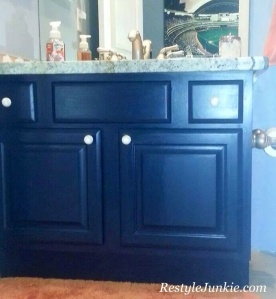 Navy Bathroom Vanity